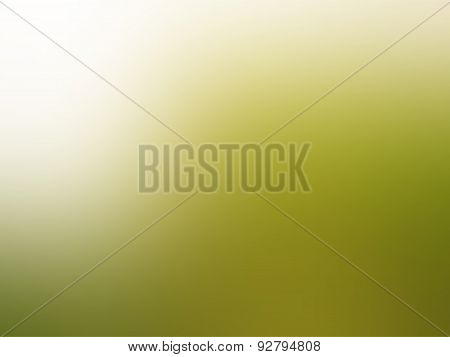 Green And White Nature Blur Background
