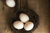 stock photo of duck  - Fresh duck eggs in moody vintage style natural lighting set up - JPG