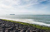 picture of tar  - Basalt blocks coated with tar green algae and creamy sea foam on the coast - JPG