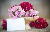 pic of carnation  - bright bouquet of carnations on the table - JPG