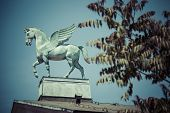 foto of pegasus  - statue of pegasus on the roof of opera in poznan poland - JPG