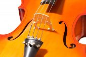 pic of cello  - Close - JPG