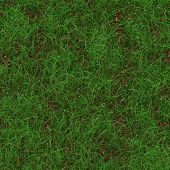 stock photo of dry grass  - Grass dry generated seamless texture or background - JPG