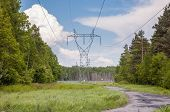 stock photo of power transmission lines  - Electricity transmission pylon and power lines in a forest - JPG
