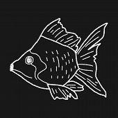 pic of goldfish  - Goldfish Doodle - JPG
