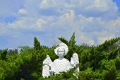 picture of angel-trumpet  - Christian stone marble Angel in forest at church - JPG