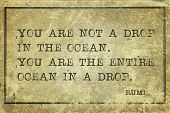 image of rumi  - You are not a drop in the ocean  - JPG