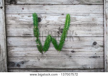 Letter  W from fir tree branches on aged wooden boards
