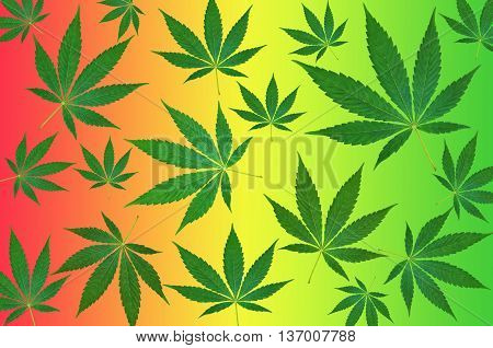 Green cannabis leafs on a colorful background pattern