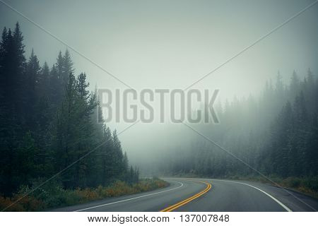 Foggy road at dusk in Banff National Park