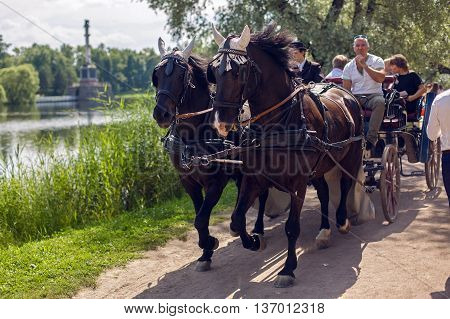 Pushkin, Russia - 2 July : two he has Bay horses in harness carry tourists in the carriage and wagon in the summer of World UFO Day on 2 July, 2016.