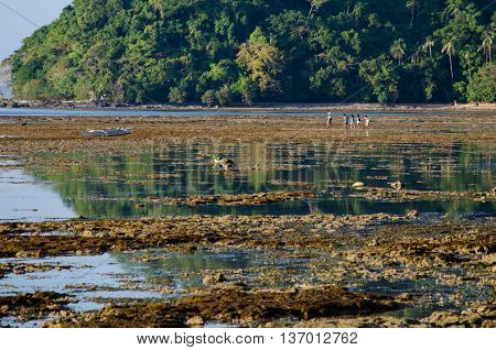 kinds walking on the low tide el nido palawan philippines