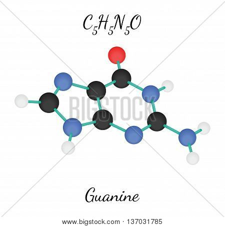 C5H5N5O guanine 3d molecule isolated on white
