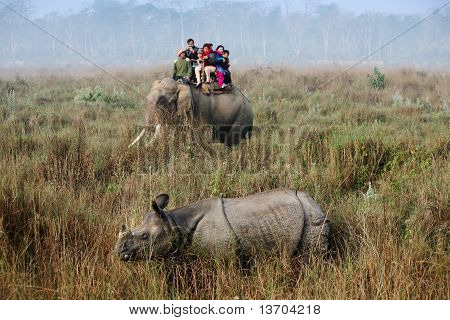 elephant safari in Chitwan national park, Nepal