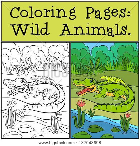 Coloring Pages: Wild Animals. Mother Alligator With Her Little Cute Baby Alligator.