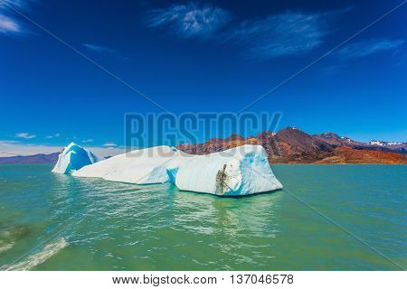 Argentina Patagonia, emerald water of lake Viedma. Huge white-blue ice floe drifts from coastal glacier
