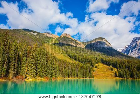 Mountain lake with emerald water surrounded by a pine forest.  Emerald Lake, Canada, Yoho National Park