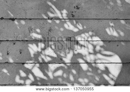 shadow of tree on raw concrete wall with wooden formwork texture
