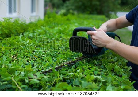 Man trimming a hedge next to a house