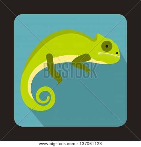 Green iguana icon in flat style with long shadow. Reptiles symbol