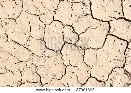 Close-up of a dried ground with copy space. Drought.
