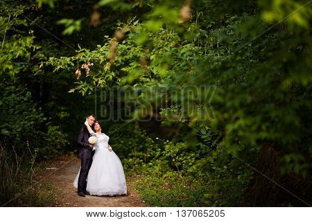 Wedding couple in the miraculously forest at wedding