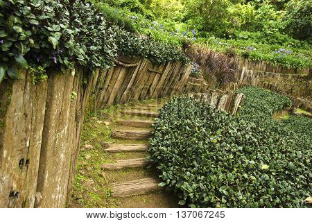 Garden path with old wooden fence in the green garden. view of Landscaping the path in the garden.