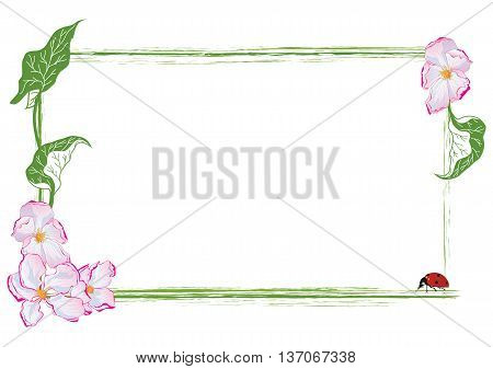 vector frame with apple flower and ladybird (EPS 10)