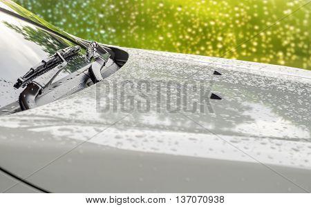 Rain Drops on a white Car Hood Close Up. Soft focus.