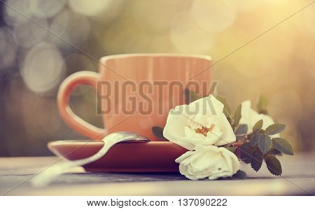 Dogrose and red cup with a spoon on a table.