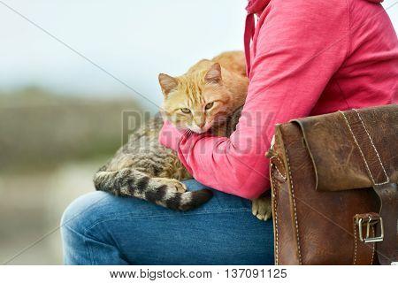 Two Cats Lying On Lap Of Woman Sitting In Garden On Stone Wall. Majorca. Balearic Island. Spain.