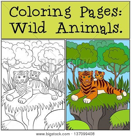 Coloring Pages: Wild Animals. Mother Tiger With Her Little Cute Baby Tiger.