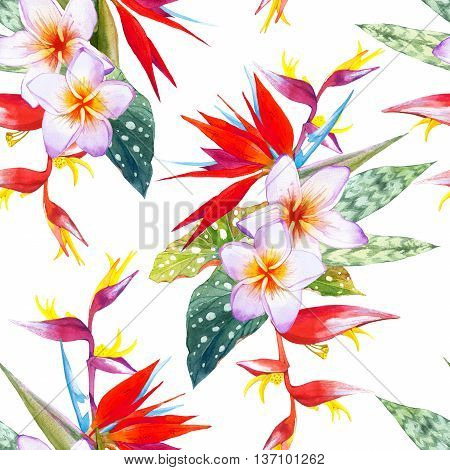 Beautiful bouquet with tropical plants on white background. Composition with plumeria strelitzia palm and begonia leaves.