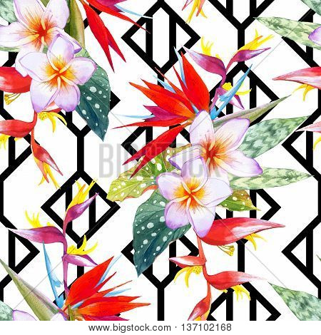 Beautiful bouquet with tropical plants on black and white background with geometric pattern. . Composition with plumeria strelitzia palm and begonia leaves.
