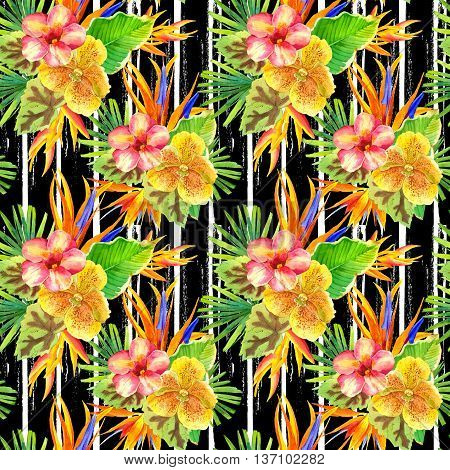 Beautiful tropical plants on a striped black and white background. Composition with lily strelitzia palm and begonia leaves and orchid.