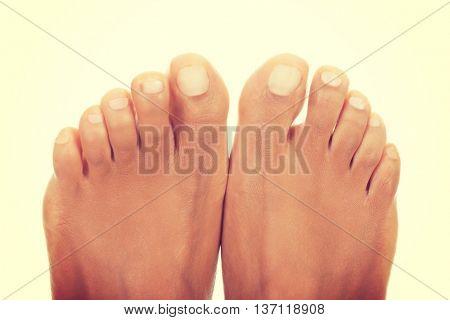 Toes close up