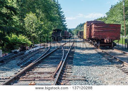 Old deserted trains sit parked on tracks.