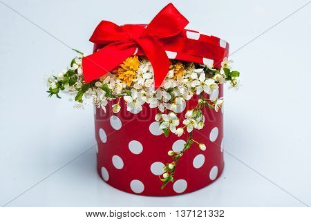 Romantic bunch of wild white and yellow flowers in bright red round box with dots decorated by bow on top closeup studio