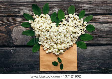 Envelope Full Of Acacia Blossoming