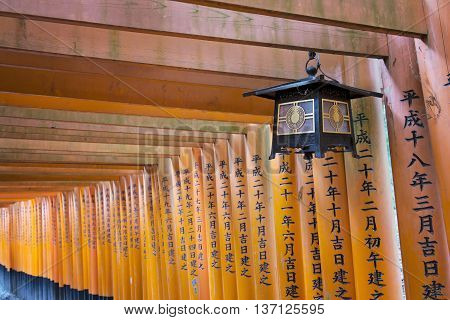 KYOTO, JAPAN - APRIL 29, 2016 : The path beyond the orange Torii gates in Fushimi Inari shrine, one of famous landmarks in Kyoto, Japan