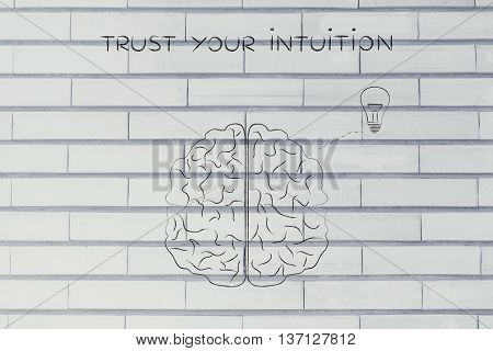 Human Brain With Lightbulb, Trust Your Intuition