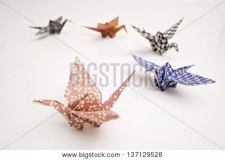 Five colorful cranes origami with white background