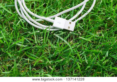 White USB cable put on grass detail