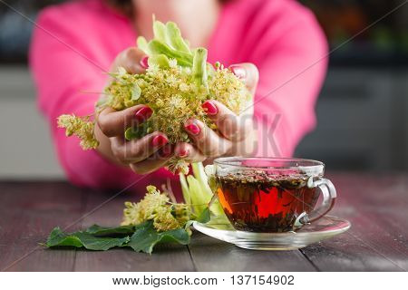 Linden Tree Flowers Used For Tea From Sore Throat