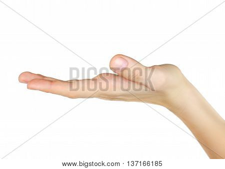 Stock photo of a Hand Open. Isolated on white.