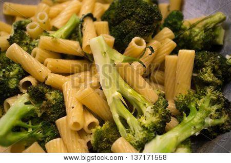 Broccoli pasta primavera ziti noodles in olive oil garlic sauce