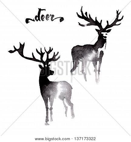 Deer ink watercolor sketch brush hand drawn
