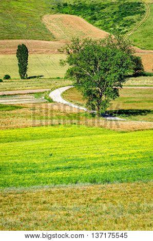 Parco di Colfiorito (Umbria) typical landscape colors