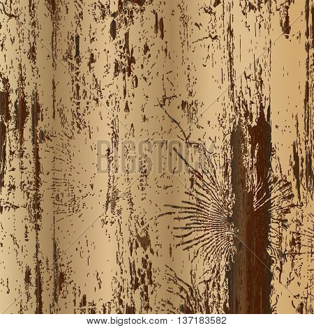 Vector wood texture with trace of bark beetles