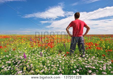 Man in spring meadow of flower. Conceptual scene.
